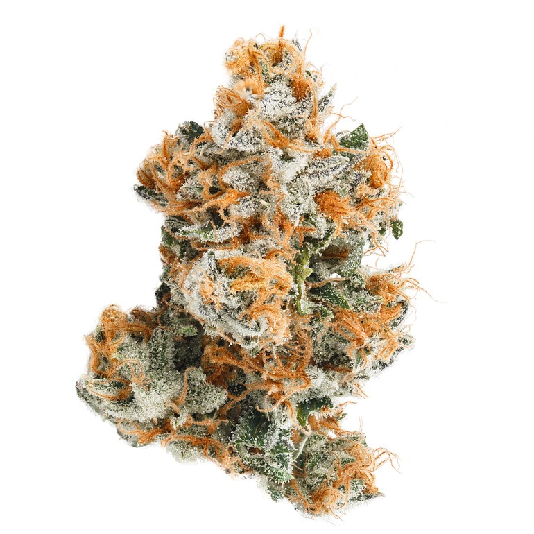 10 Best Weed Strains of 2019 - Strongest & Highest THC Weed