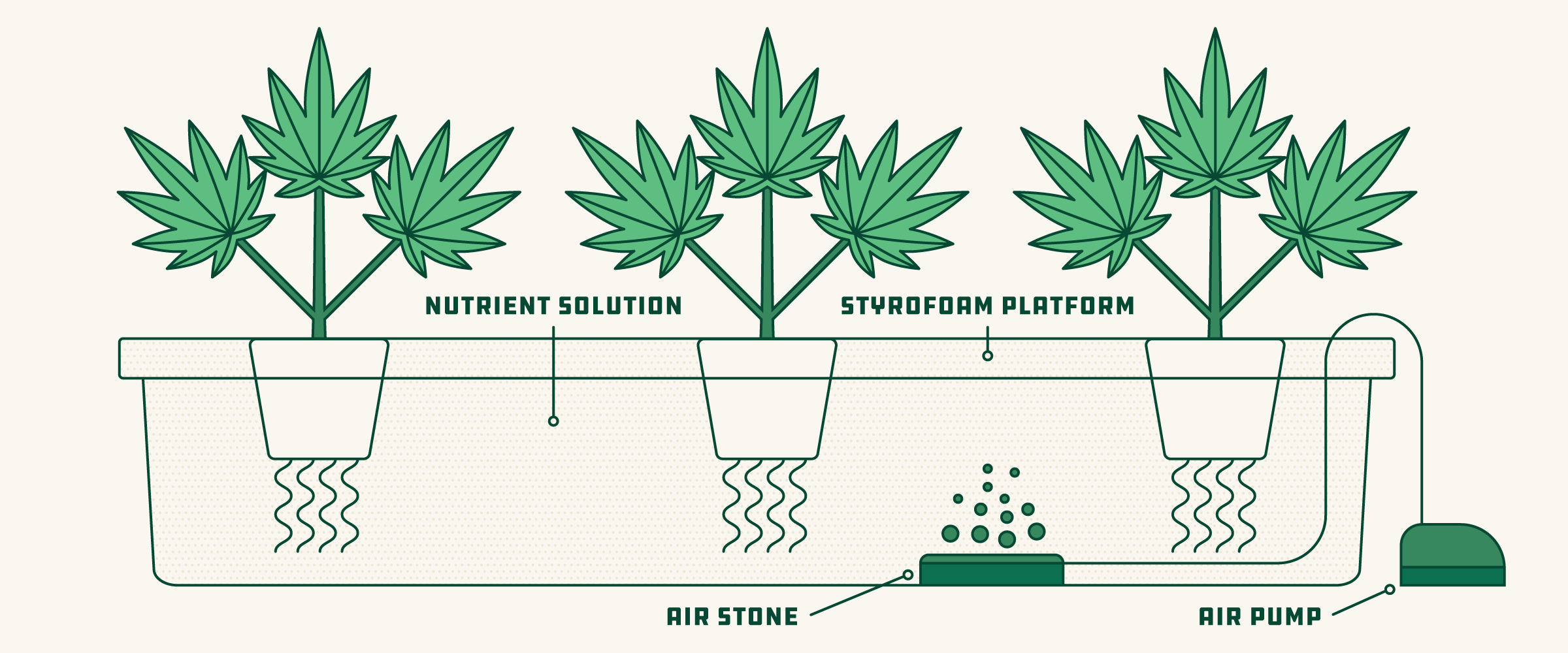 How to Set Up a Hydroponic Grow System for Cannabis - March 2019