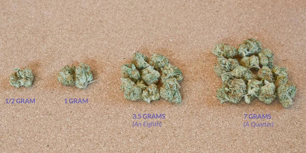 sizes of weed