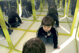 Mirror Labyrinth