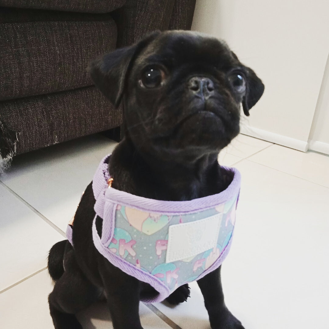 Reversible dog harness: Flip the bird - J'dore