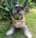 Reversible dog harness: I'm a Queen - J'dore