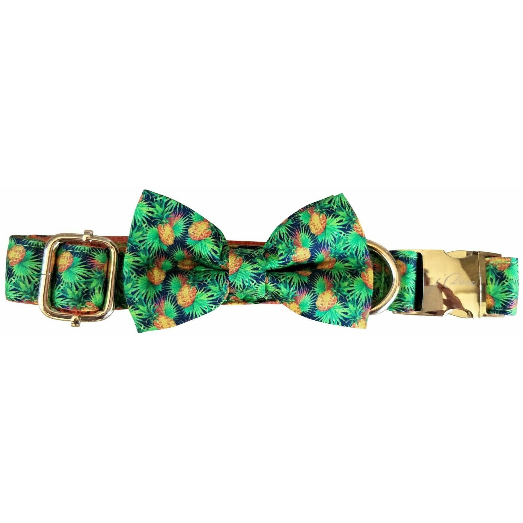 dog collar & bow-tie: Orange tropicana - J'dore