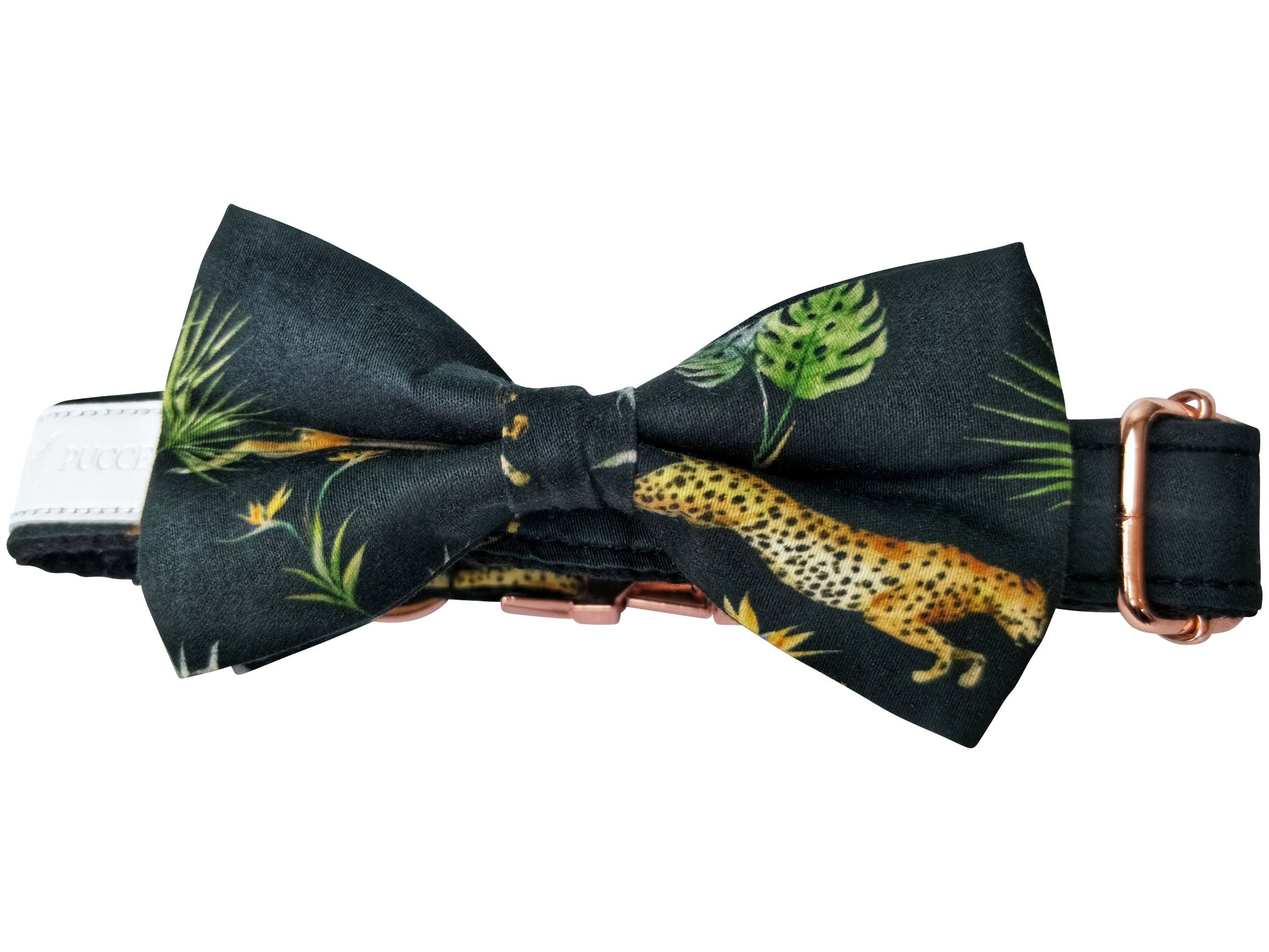 Dog collar & Bow-tie: Cheetah safari - J'dore