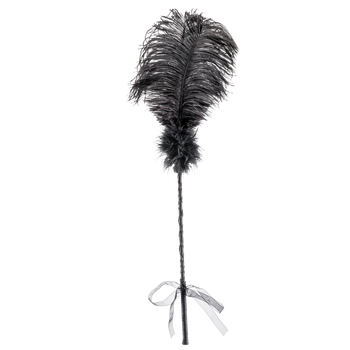 Bondage - La Vie Nue Showgirl Feather Tickler