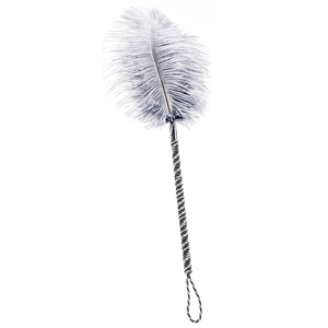 Boudoir Player Feather Tickler