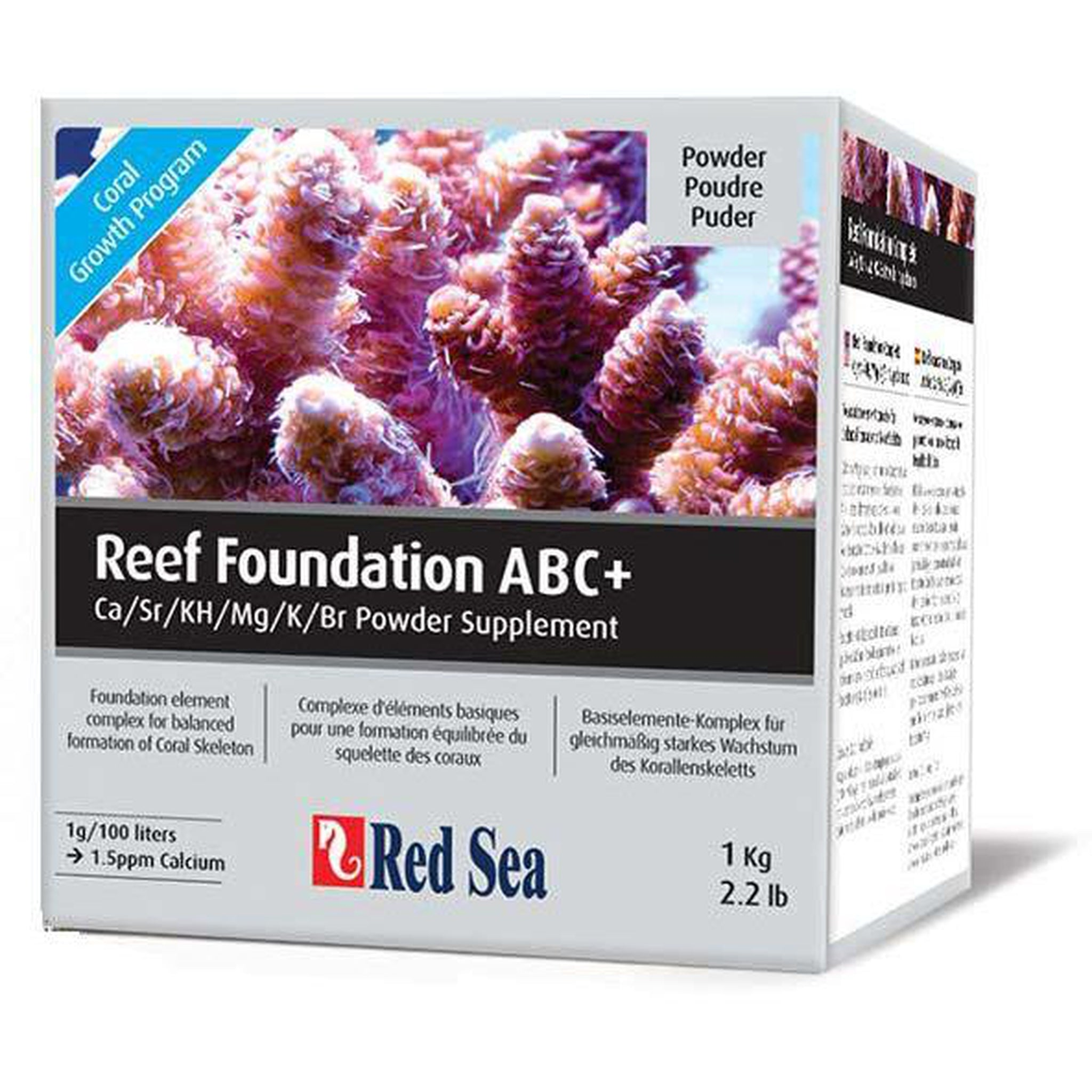 red_sea_reef_foundation_abc+_RH8WUXRRHZ1A.jpg