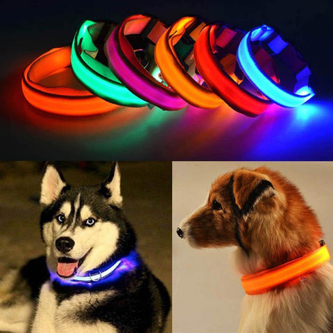Glowing In The Dark Pet Safety Collar - Safety Collar