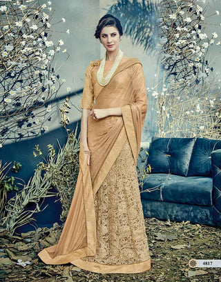 Beige Net Saree With Beige Blouse