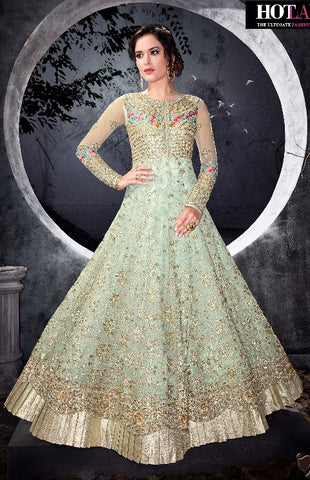 Blue Net Gown Type Anarkali With Dupatta