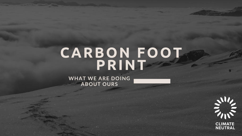 Carbon Foot Print - What We Are Doing About Ours