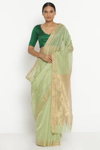 Sage Green Handloom Pure Silk Cotton Chanderi Saree with All Over Gold Zari Checks