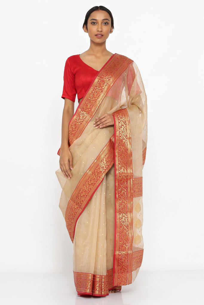 Light Brown Handloom Pure Silk Chanderi Sheer Saree with Allover Zari Motif and Detailed Border