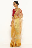 Gold Tissue Banarasi Sheer Saree with Detailed Zari Border