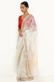Silver Tissue Banarasi Sheer Saree with Intricate Floral Border