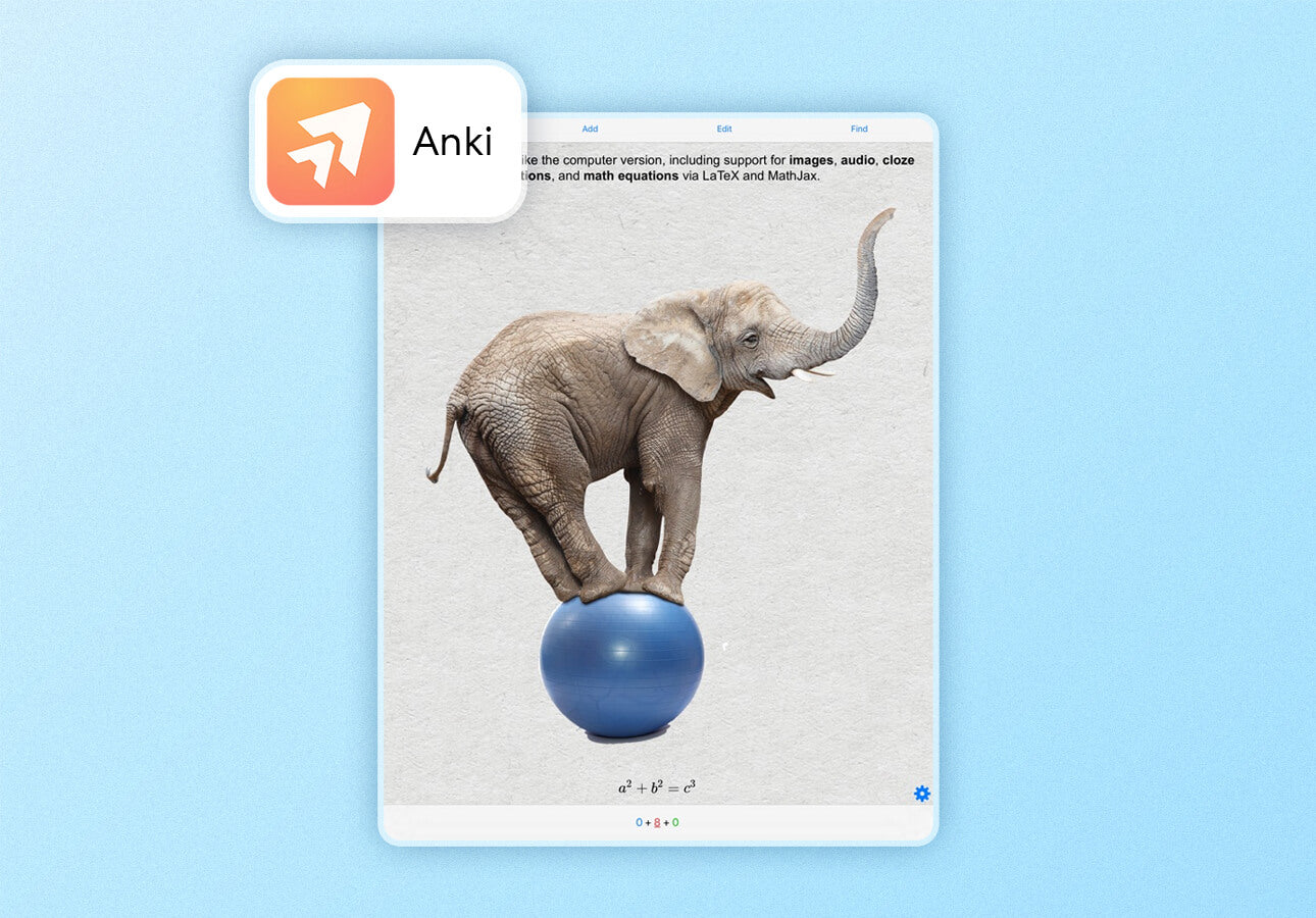 An image of the Anki app interface.