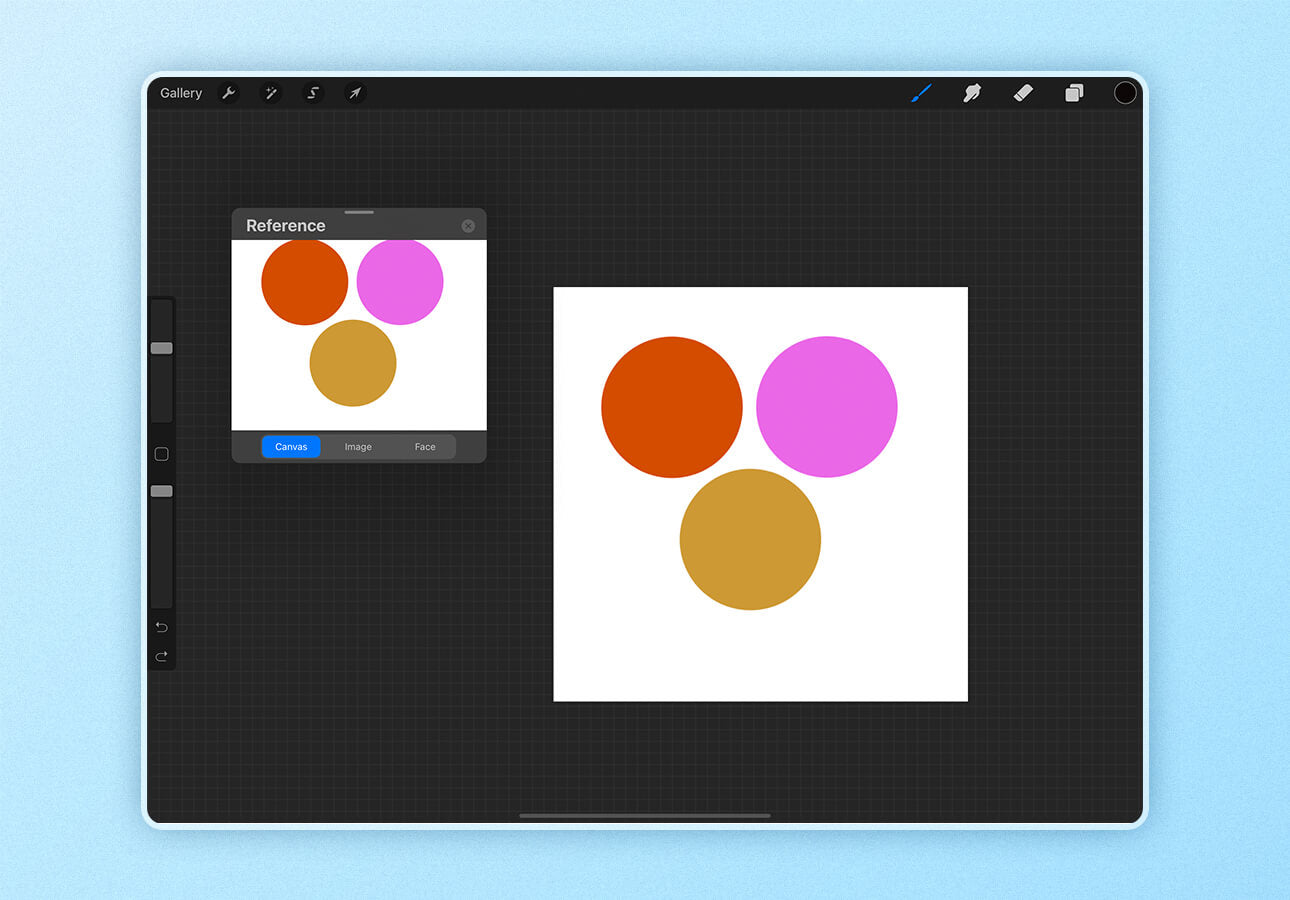 An image displaying the reference feature in Procreate.