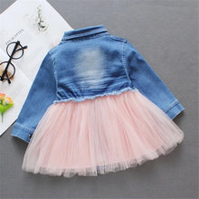 Load image into Gallery viewer, Denim Tutu Pink Dress - Mom and Bebe Ph