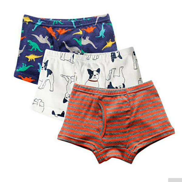 Boys Briefs 3Pcs