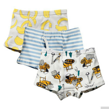 Load image into Gallery viewer, Boys Briefs 3Pcs