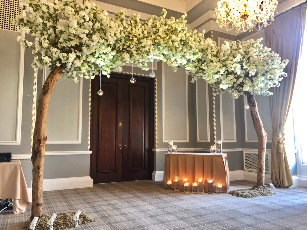 Two 10.5ft White Cherry Blossom Arch Trees (Full Arch)