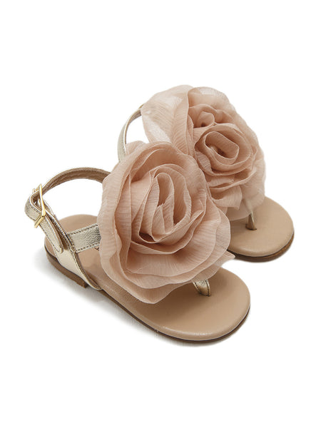 Leoni Gold/Pink Shoes