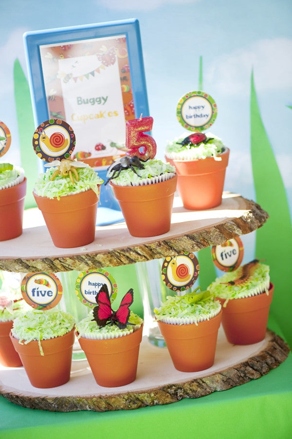 Bugs & Insects Birthday Party Printables Supplies   BirdsParty.com