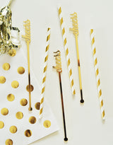 Cheers Gold Acrylic Drink Stirrers (Set of 6) | BirdsParty.com