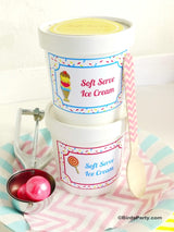 Mini Ice Cream Tub Containers with Lids | BirdsParty.com