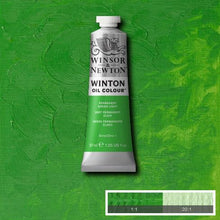 Load image into Gallery viewer, Winsor & Newton Winton Oil Colour 200ml Tubes