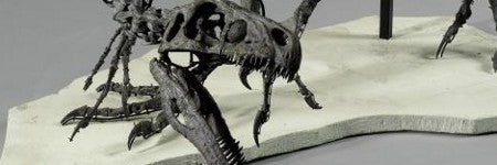 Ornitholestes dinosaur skeleton to be offered at $613,000