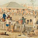$60,000 Angas paintings of a young Australia come to Bonhams art auction