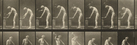 Eadweard Muybridge's Animal Locomotion beats estimate