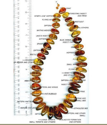 Amber insect necklace auction