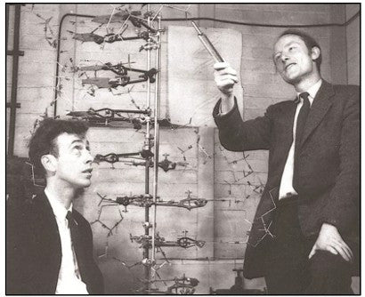 Francis Crick DNA Discovery