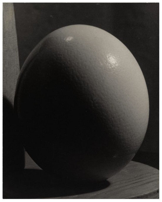 Man Ray Ostrich Egg