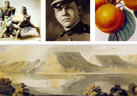 National Book Auctions November image selection