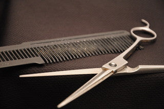 Comb and scissors with Neil Armstrong's hair