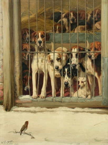 William Trood - Hounds in a Kennel