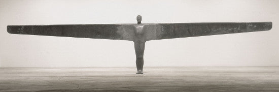 Gormley Case Angel