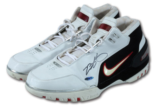 LeBron shoes SCP