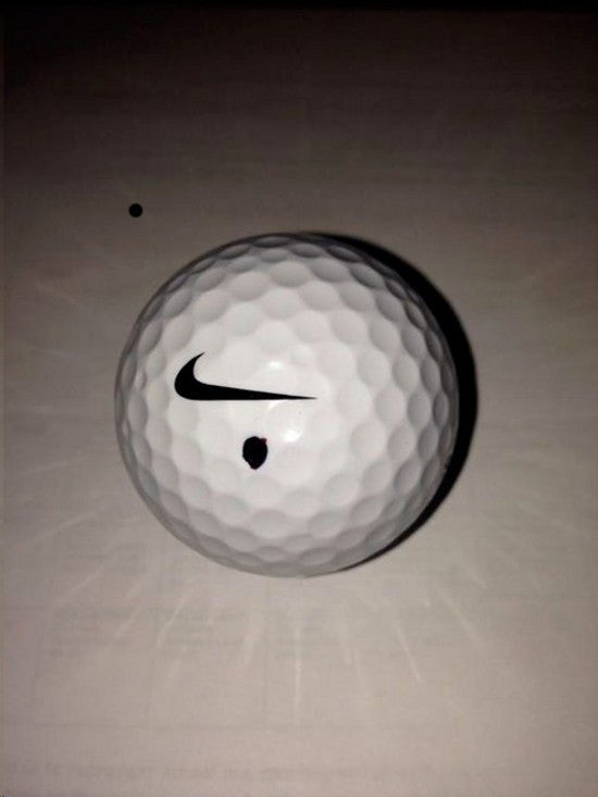 McIlroy ball auction