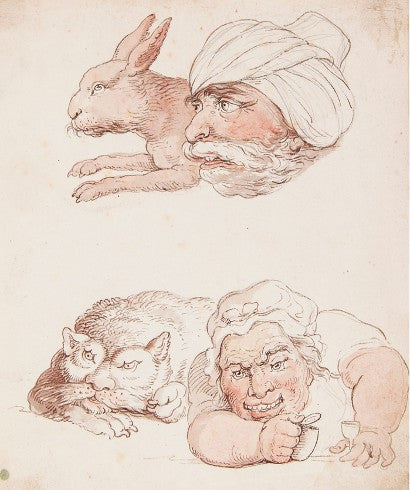 Rowlandson Comparative Anatomy