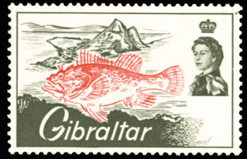 Gibraltar 1966 Angling 7d, error 'Black (value and inscription) omitted, SG191a