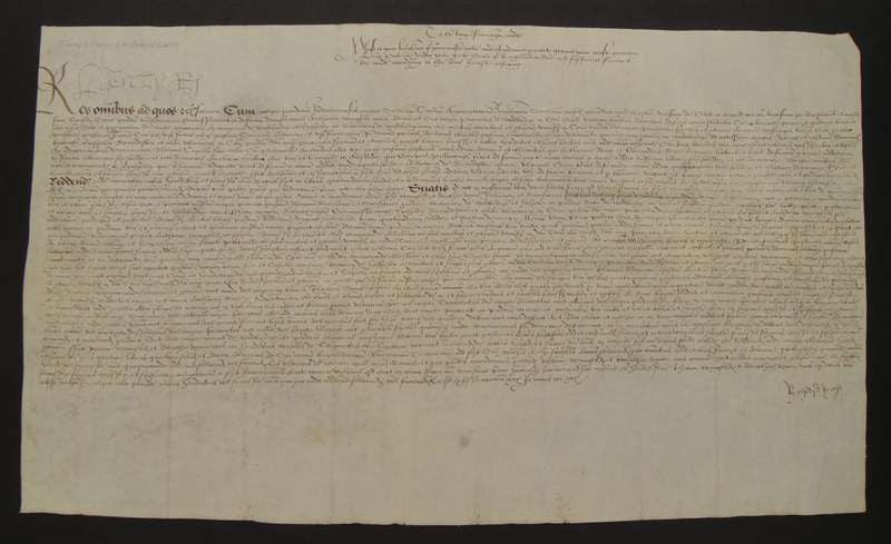 King Henry VIII Autographed Petition