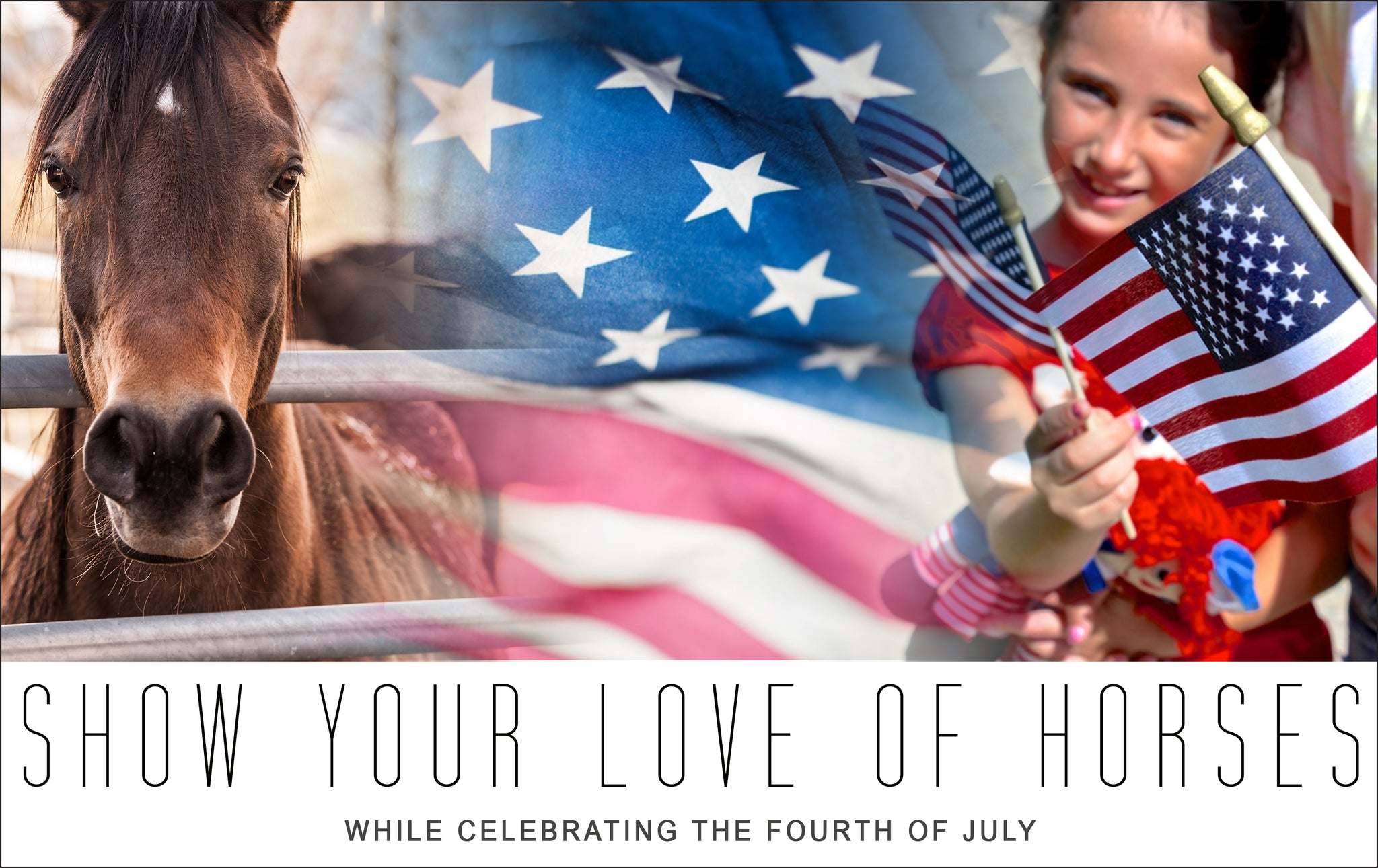Show Your Love for Horses While Celebrating the Fourth