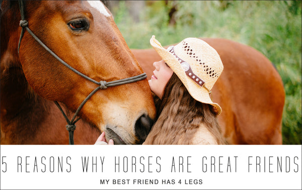 5 Reasons Why Horses are Great Friends