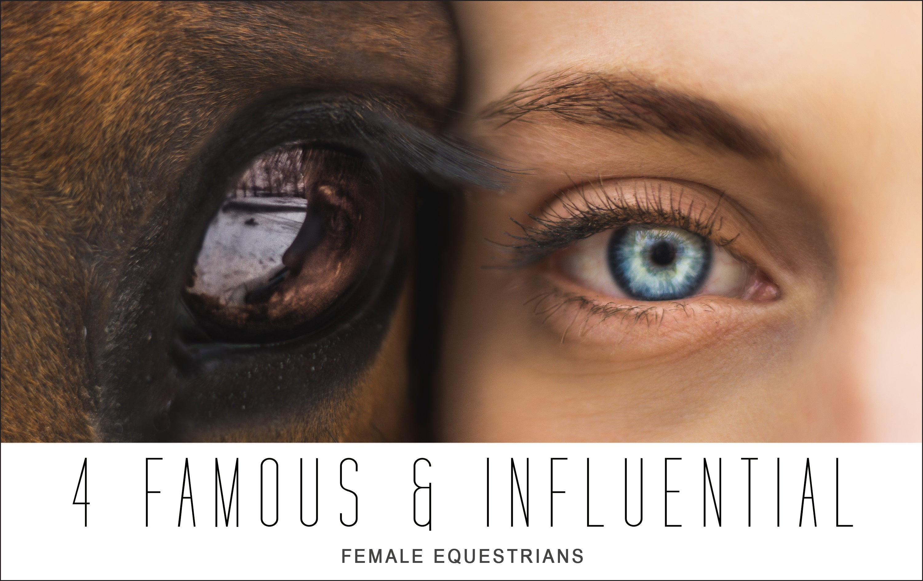 4 Famous and Most Influential Female Equestrians