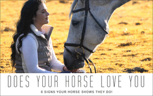 Does Your Horse Love You? 6 Signs Your Horse Shows She Does!