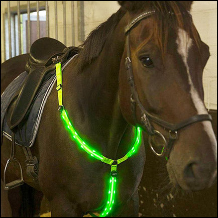 LED Horse Harness